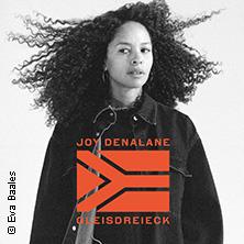 Joy Denalane: Gleisdreieck Tour 2017