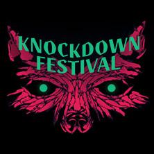 Knock Down Festival 2016