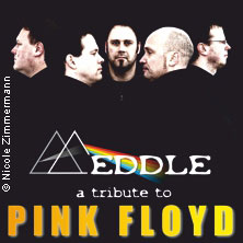 Meddle - A tribute to Pink Floyd: ...is there anybody out there?