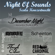 Night Of Sounds