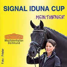Signal Iduna Cup Karten für ihre Events 2017