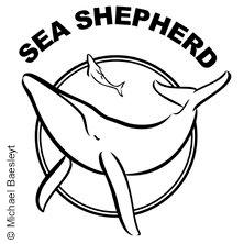 40 Jahre Sea Shepherd in MÜNCHEN * Polarstern Energie & Strom,