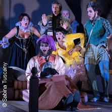 Der Barbier von Sevilla - Theater der Stadt Schweinfurt in SCHWEINFURT * Theater der Stadt Schweinfurt,