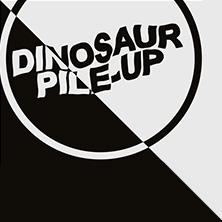 Dinosaur Pile-Up Tickets