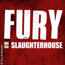 Fury In The Slaughterhouse in ST. GOARSHAUSEN / LORELEY * Loreley Freilichtbühne,