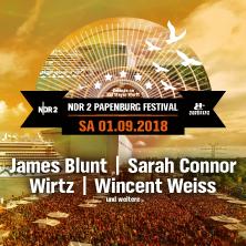 NDR 2 Papenburg Festival 2018 in PAPENBURG * Gelände vor der Meyer-Werft,