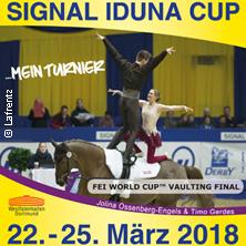 Signal Iduna Cup 2018 Tickets