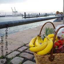 Sonntagmorgen Spezial zum Fischmarkt! - Hamburg Stadtführung