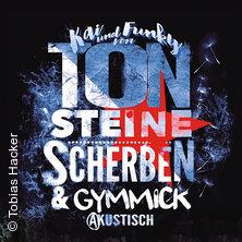 Ton Steine Scherben - akustisch ... in ROTENBURG A.D. FULDA * Bürgersaal am Bahnhof,