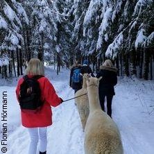 Alpaka Wanderung - Valentinstag ! in Lechbruck am See in LECHBRUCK AM SEE * AlpenAlpakas,