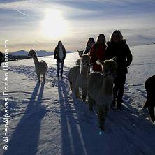 Alpaka Winter Wanderung im Allgäu -Alpaka Glühwein - Punsch Wanderung