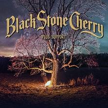 Black Stone Cherry in KARLSRUHE * SUBSTAGE Karlsruhe