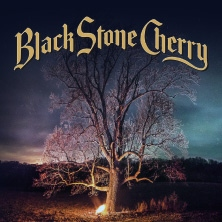 Black Stone Cherry in Köln, 11.11.2018 - Tickets -