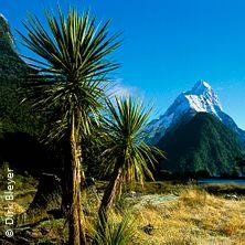 Dirk Bleyer: Neuseeland