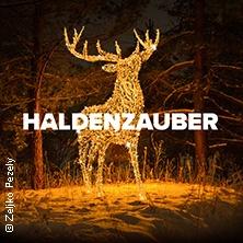HALDENZAUBER - Der große Lichterpark - 26.11.18 bis 06.01.2019 in HÜCKELHOVEN * Millicher Halde,