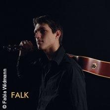Bild für Event Konzert Falk