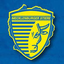 Mecklenburger Stiere: Saison 2018/2019