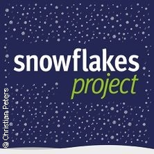 Snowflakes Project