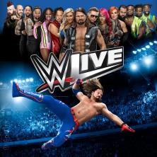 WWE Live in KÖLN * LANXESS arena,