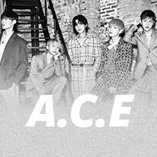 A.C.E - World Tour