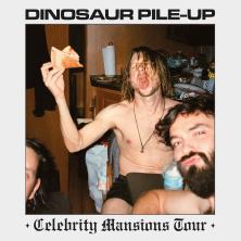 Dinosaur Pile-Up: Celebrity Mansions Tour