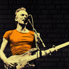 Sting - My Songs Tour 2020 | Tollwood 2020 in München, 06.07.2020 -