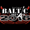 Baltic Open Air 2016